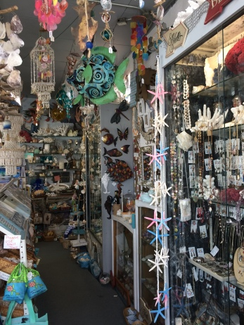 sea-things-ventura-california-38